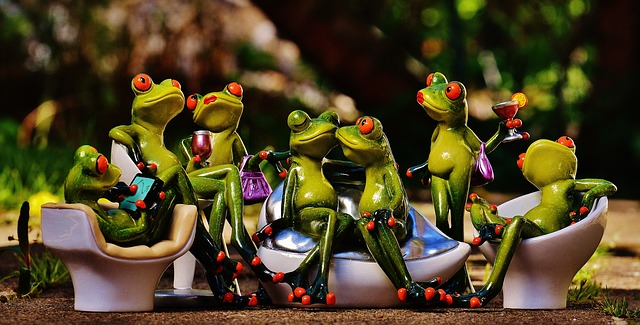 frogs-1364164_640